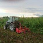 耕作放棄地の再生作業を行っています
